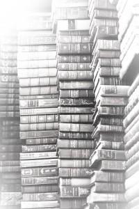 lotsofbooks-2
